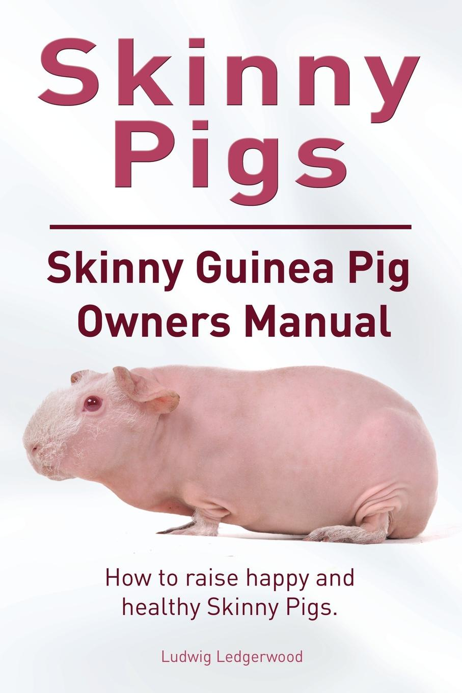Ludwig Ledgerwood Skinny Pig. Skinny Guinea Pigs Owners Manual. How to raise happy and healthy Skinny Pigs. a guinea pig romeo