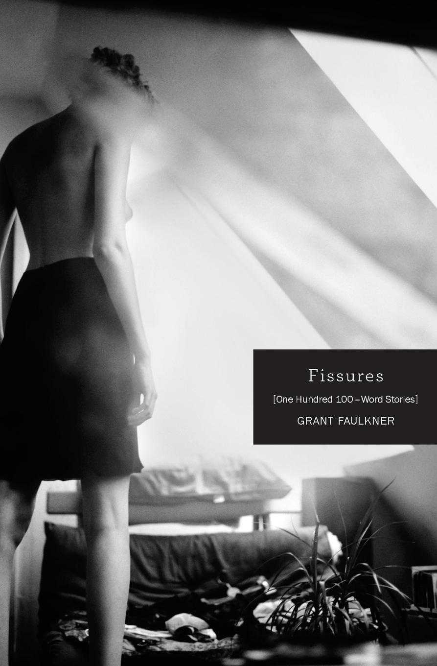 Grant Faulkner Fissures. One Hundred 100-Word Stories цена и фото