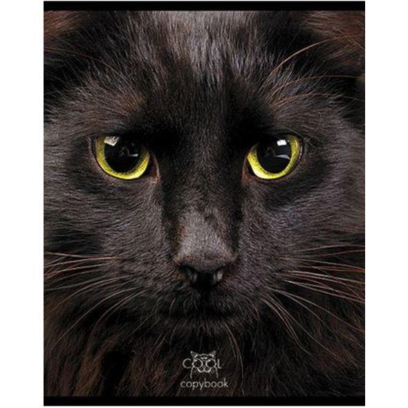 Тетрадь HATBER Кошачьи мордочки 48 листов в клетку формат А5, 10 ШТ тетради hatber тетрадь вояж а5 48 листов
