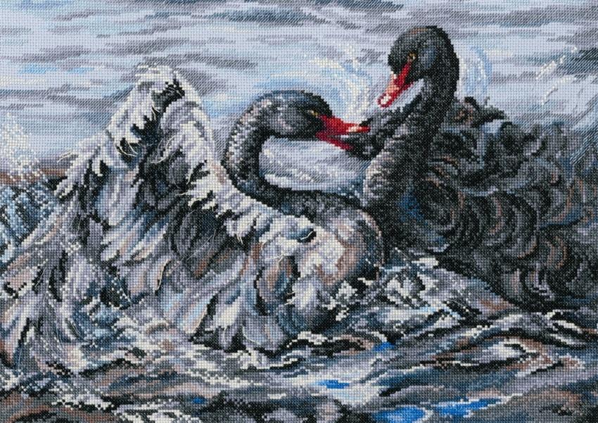 M557 Два чёрных лебедя