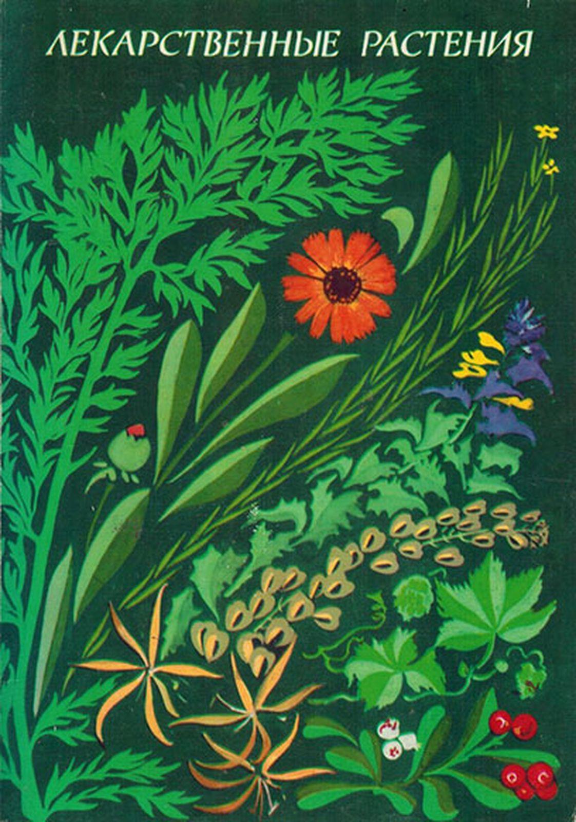 Лекарственные растения. Выпуск 1 (набор из 32 открыток)