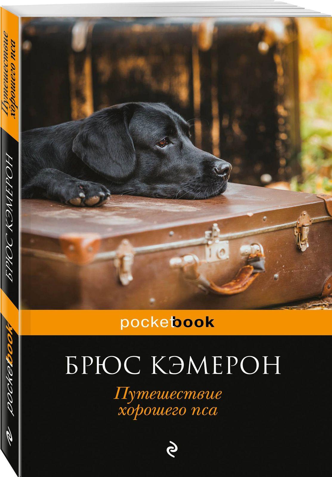 Я его пес, он мой мальчик (комплект из 2 книг)