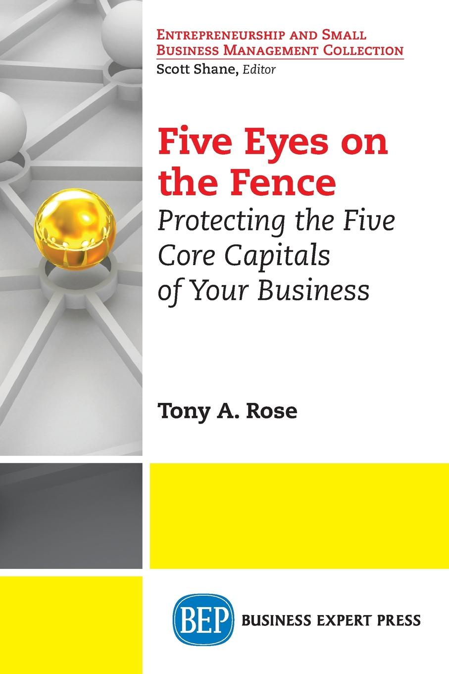 Rose. Tony A. Five Eyes On the Fence. Protecting the Five Core Capitals of Your Business capital inicial recife