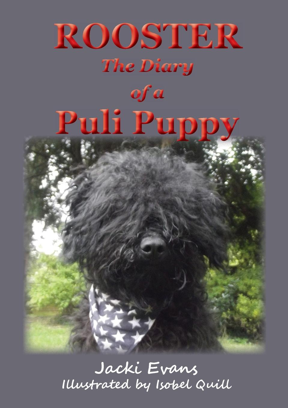 Jacki Evans Rooster - the Diary of a Puli Puppy the rooster bar