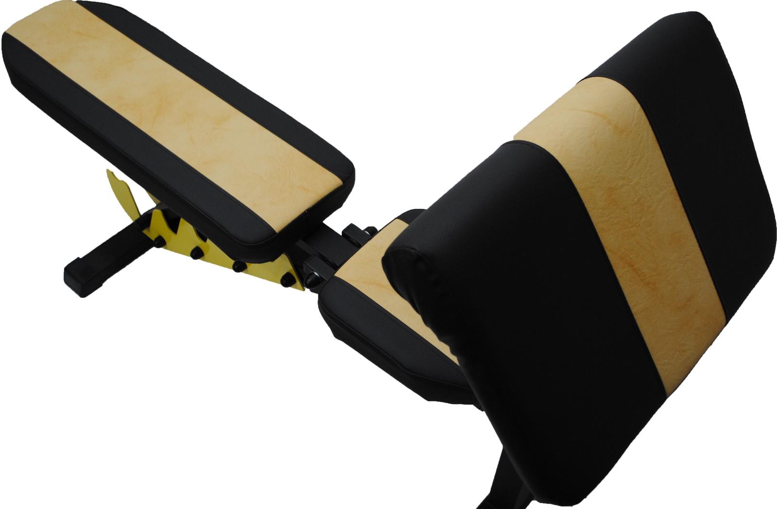 Универсальная атлетическая скамья Orion Sportlim ЧЖ и Парта Скотта цена