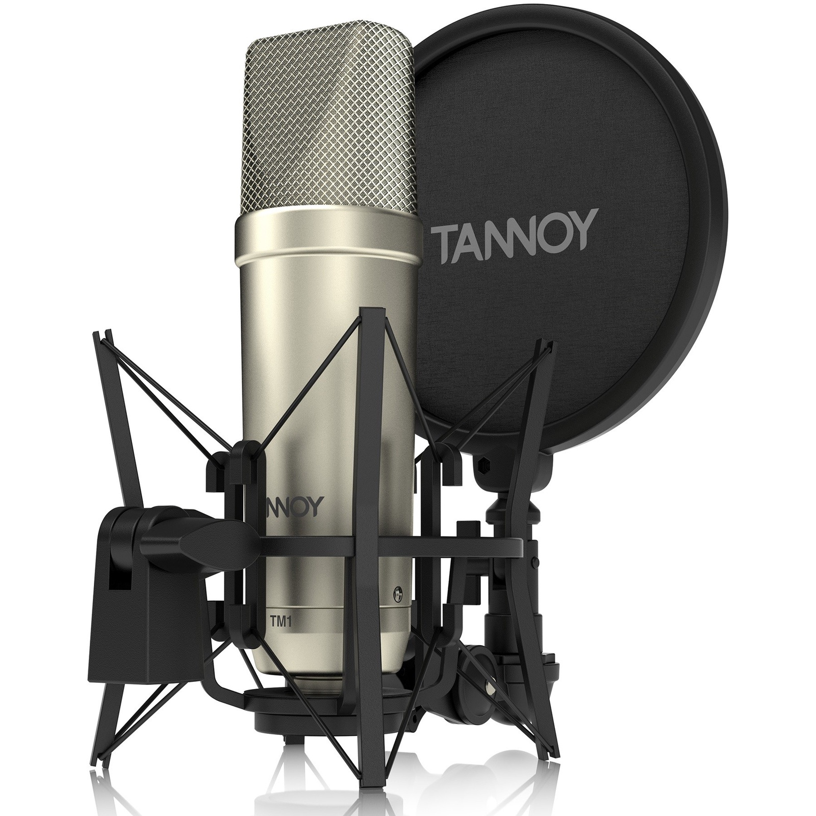"""Tannoy TM1 конденсаторный микрофон с большой мембраной 1"""" в комплекте с подвесом """"паук"""", поп-фильтром и кабелем"""
