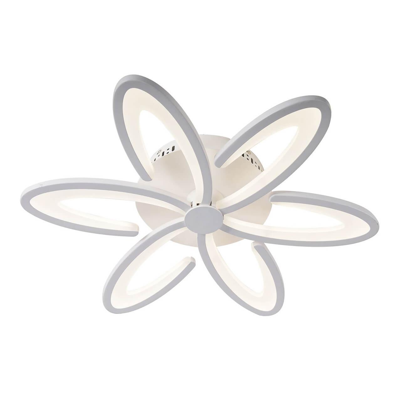 Потолочный светильник Omnilux OML-49307-60, LED, 10 Вт