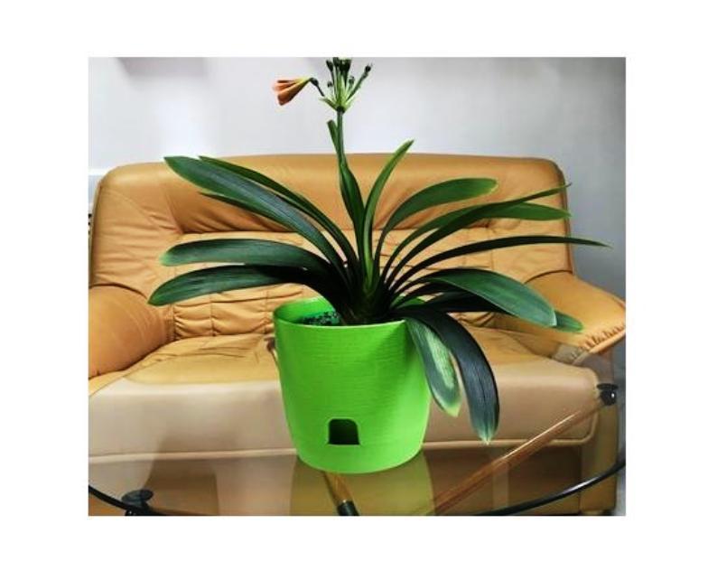 Горшок для цветов с поддоном Le Twist (Ле Твист) диаметр 19 см, объем 3,3 литра, бежевый, дренаж, кашпо, боковая система полива, ТЕК.А.ТЕК ТЕК.А.ТЕК