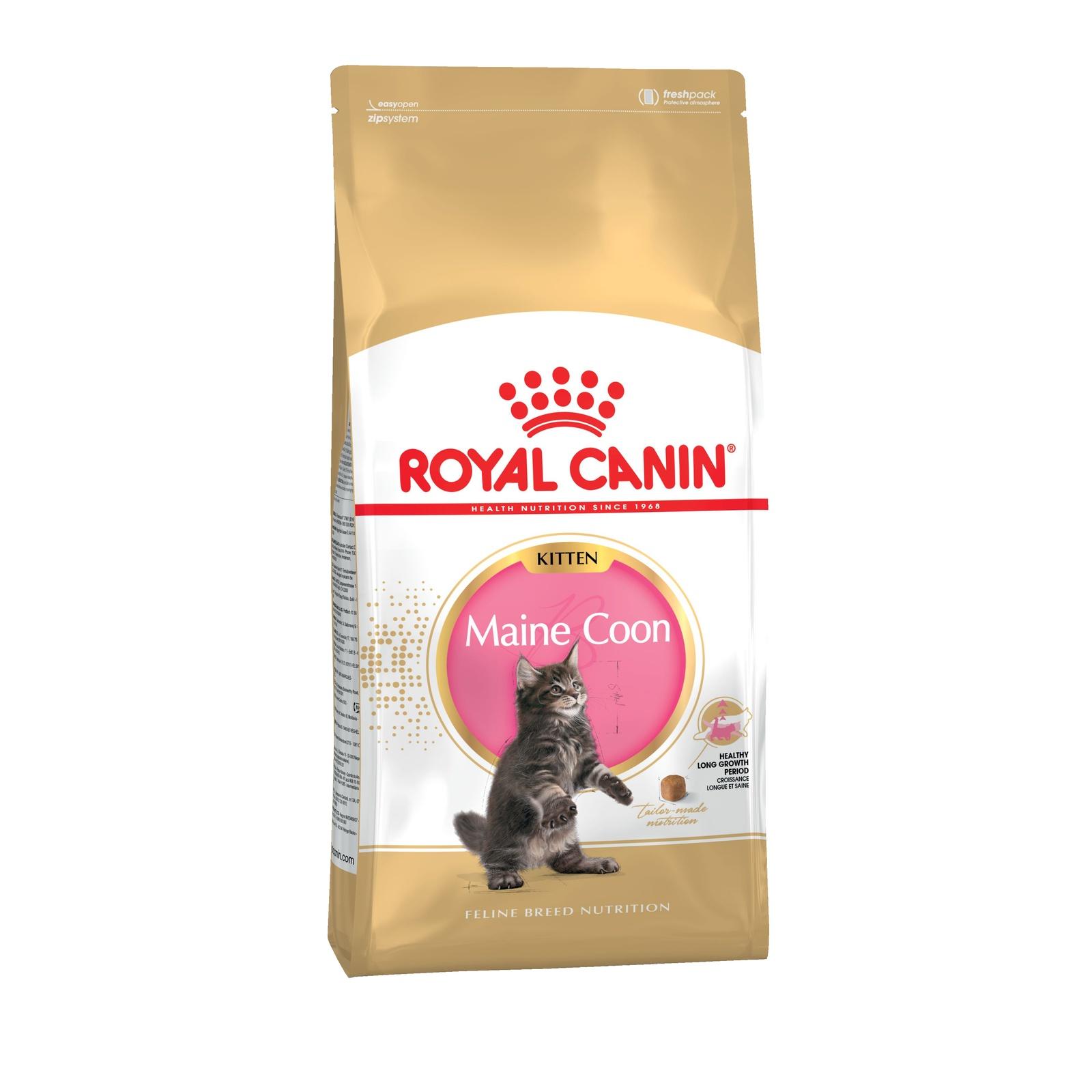 ROYAL CANIN Feline Breed Nutrition Kitten Maine Coon корм для котят породы Мэйн-Кун 4кг корм для кошек взрослых породы мейн кун соус 12х0 085 кг