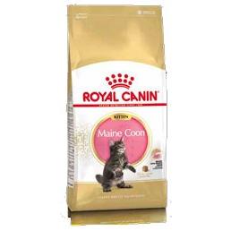 ROYAL CANIN Feline Breed Nutrition Kitten Maine Coon корм для котят породы Мэйн-Кун 10кг корм для кошек взрослых породы мейн кун соус 12х0 085 кг