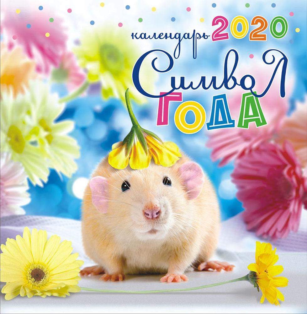 Картинки год крысы 2020, дашуля днем