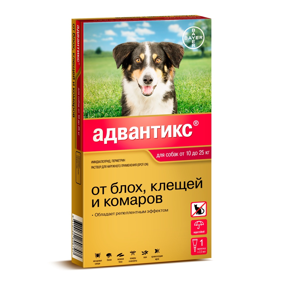 Bayer Golden Line Адвантикс 250С Капли для щенков и собак от клещей, блох и комаров (массой от 10 кг до 25 кг) (4 пипетки) капли цитодерм дерматологические для улучшение кожи и шерсти для собак 10 30 кг 4 пипетки