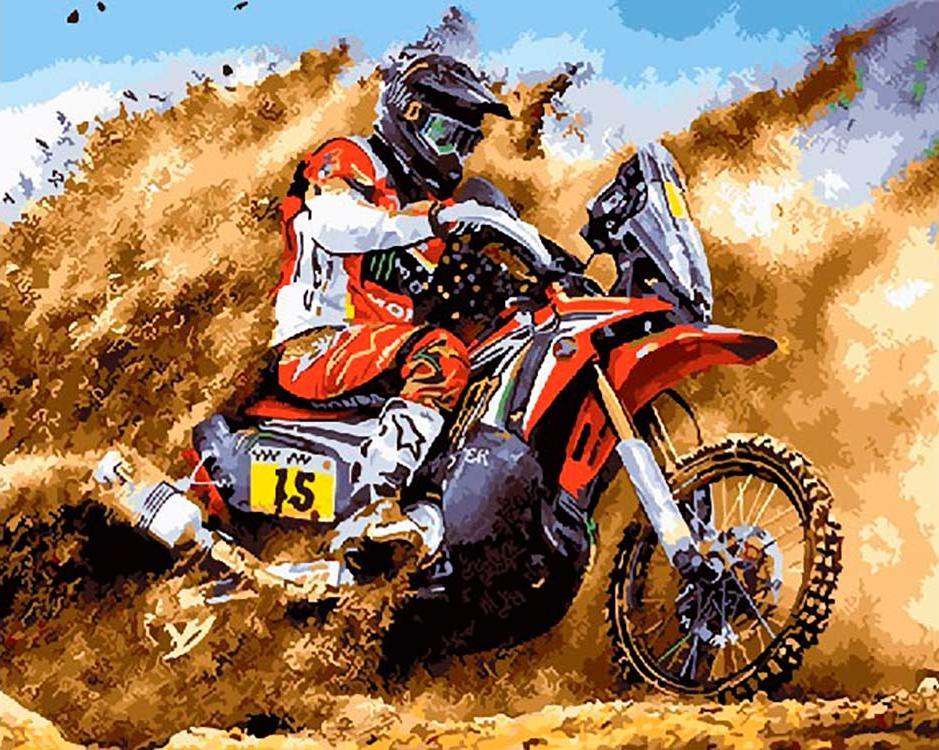 "Картина по номерам Paintboy Original ""Гонки на мотоцикле"" 40х50см"