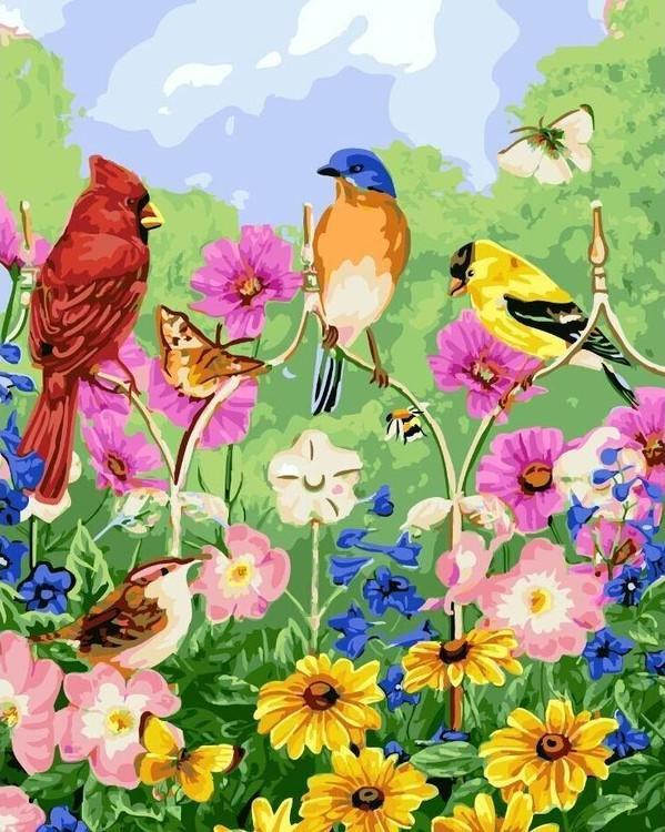 Картина по номерам Цветной Птички, бабочки, цветы 40х50см мыльница fixsen adele хром стекло fx 55008