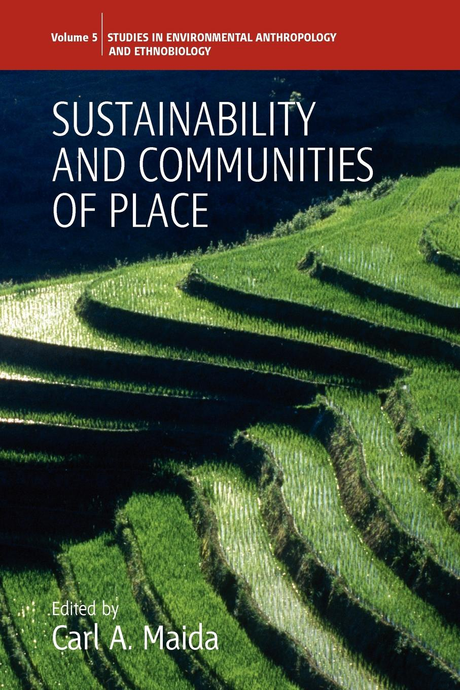 Sustainability and Communities of Place nicolas lesca environmental scanning and sustainable development