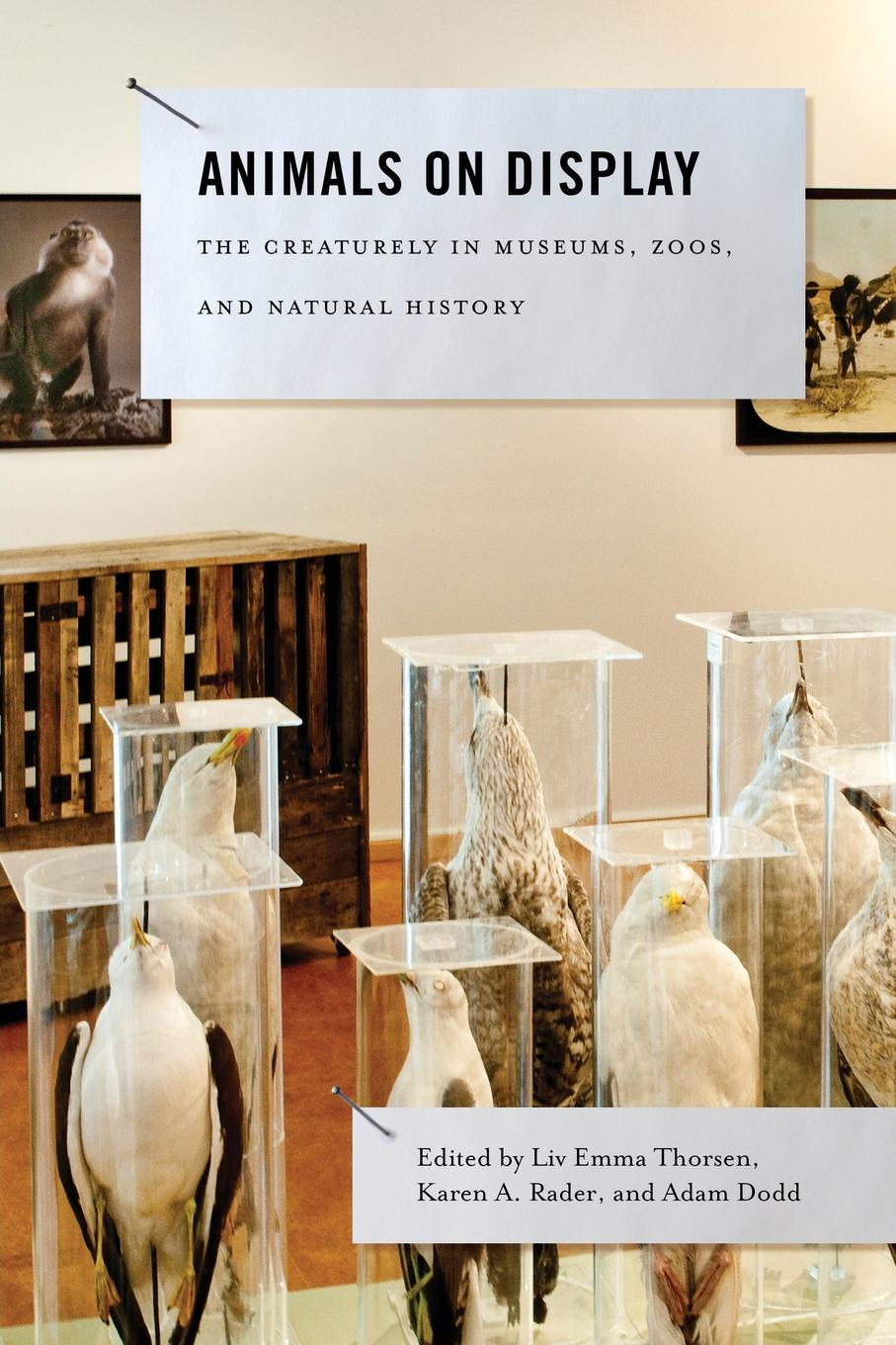 Animals on Display. The Creaturely in Museums, Zoos, and Natural History the animals the animals the best of the animals