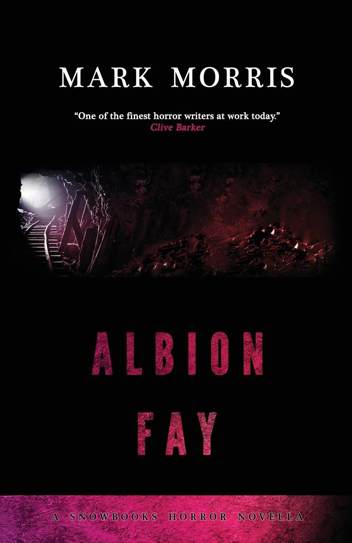 Mark Morris Albion Fay fay куртка