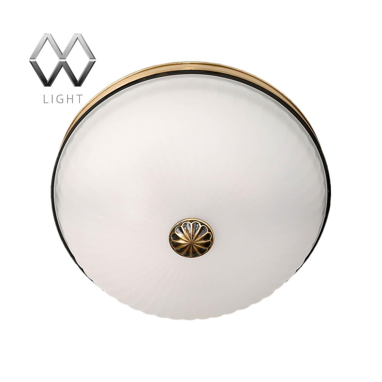 Накладной светильник MW-Light 295013402, E27, 60 Вт mw light 680030801