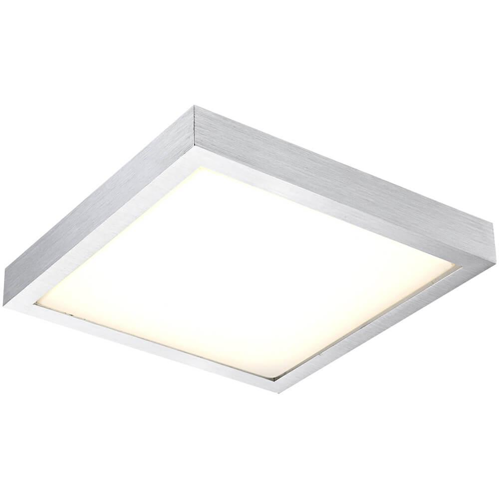 Потолочный светодиодный светильник Globo Tamina 41661