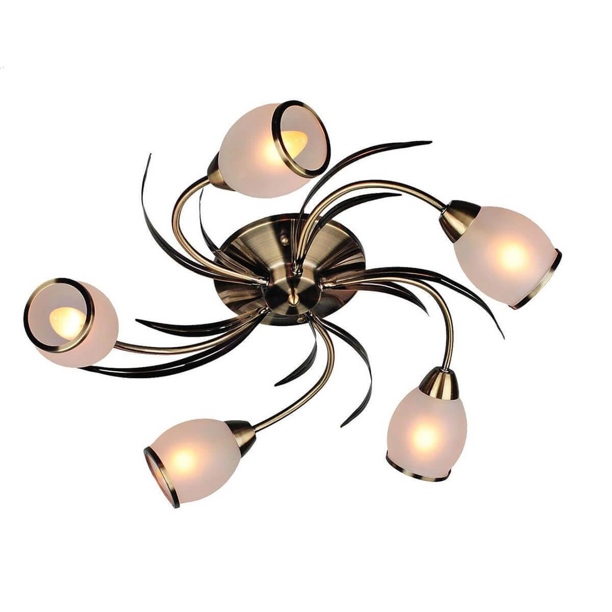 Потолочный светильник Omnilux OML-35827-05, E14, 60 Вт