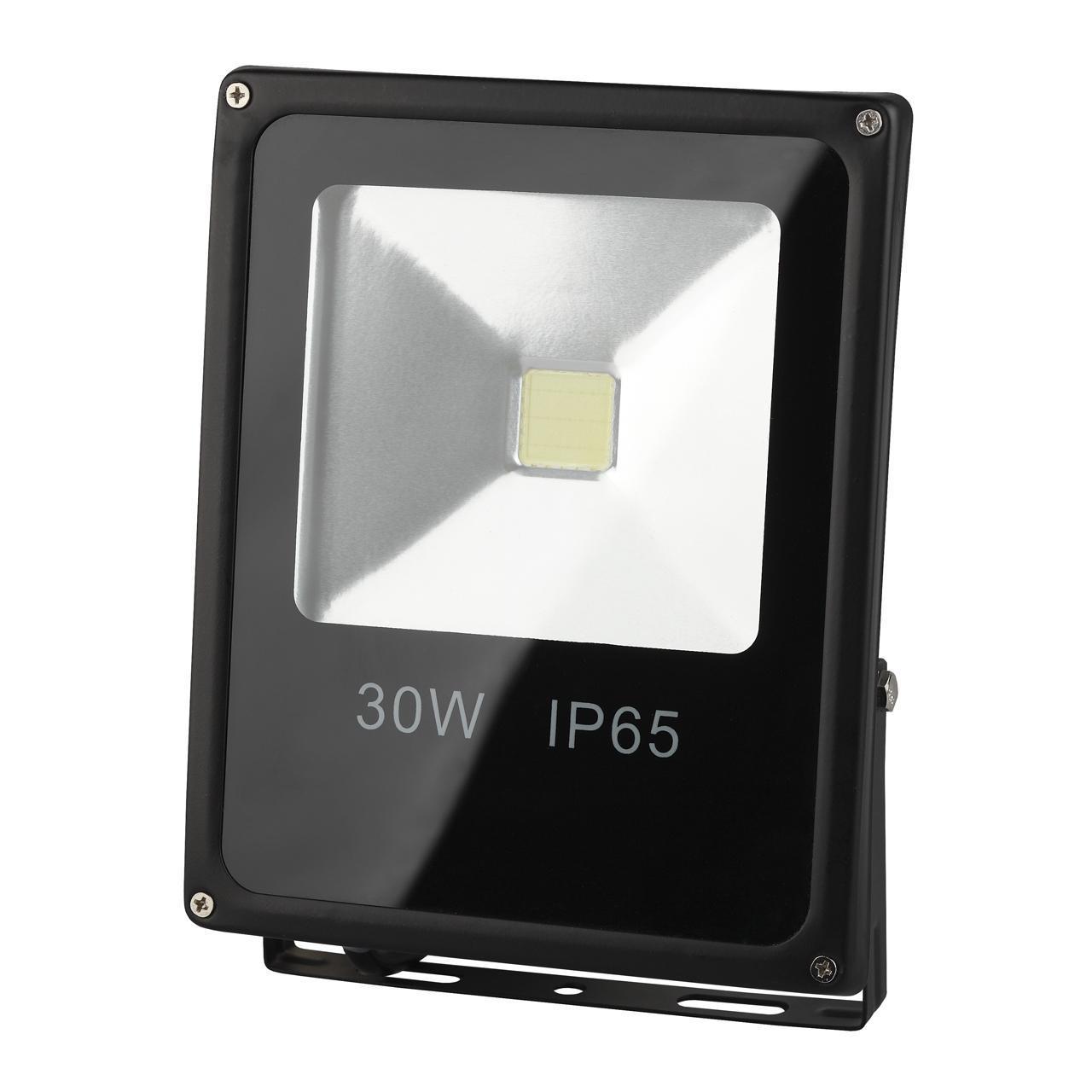 Прожектор Эра LPR-30-6500K-M, 30 Вт
