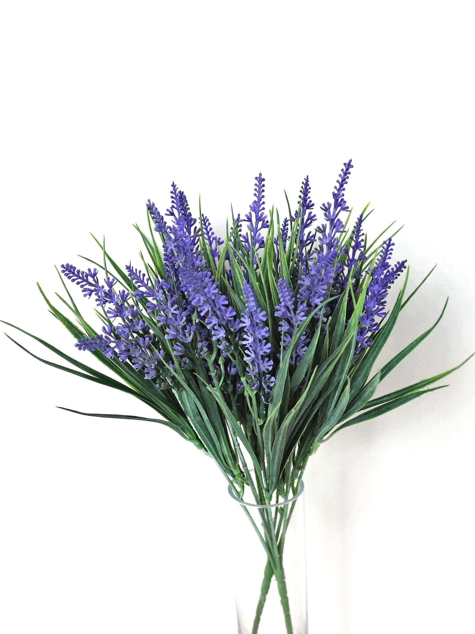 Купить цветы букет лаванды минск, букеты