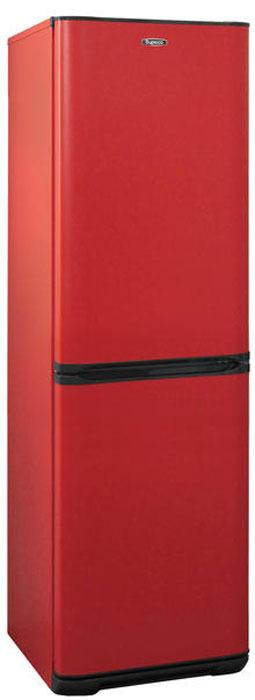Фото - Холодильник Бирюса H133, двухкамерный, красный двухкамерный холодильник hitachi r vg 472 pu3 gbw