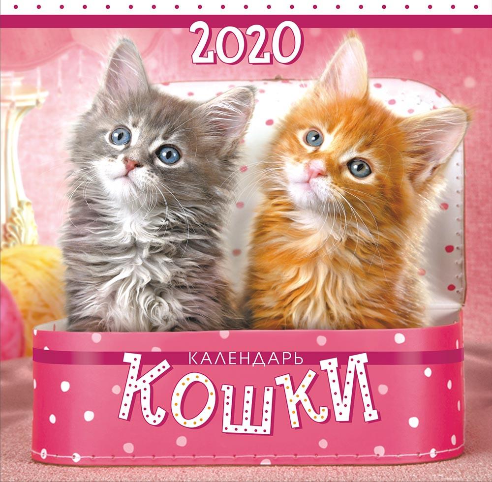 Фото - Календарь перекидной на скрепке большой на 2020 год, Котята 300х300 мм БПК-20-016 м 300х300