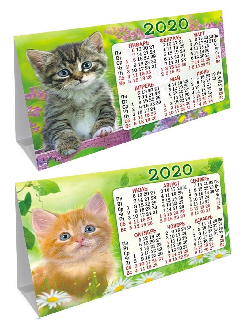 Календарь (домик складной) Кошки на 2020 год, 188х130мм КДС-20-011