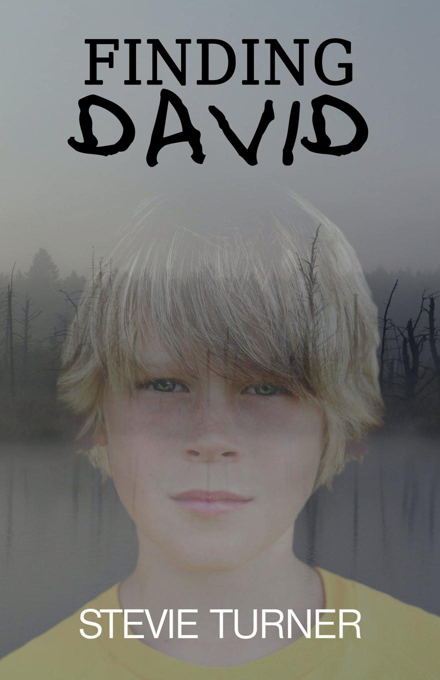 Stevie Turner Finding David. A Paranormal Short Story karen booth the best man s baby