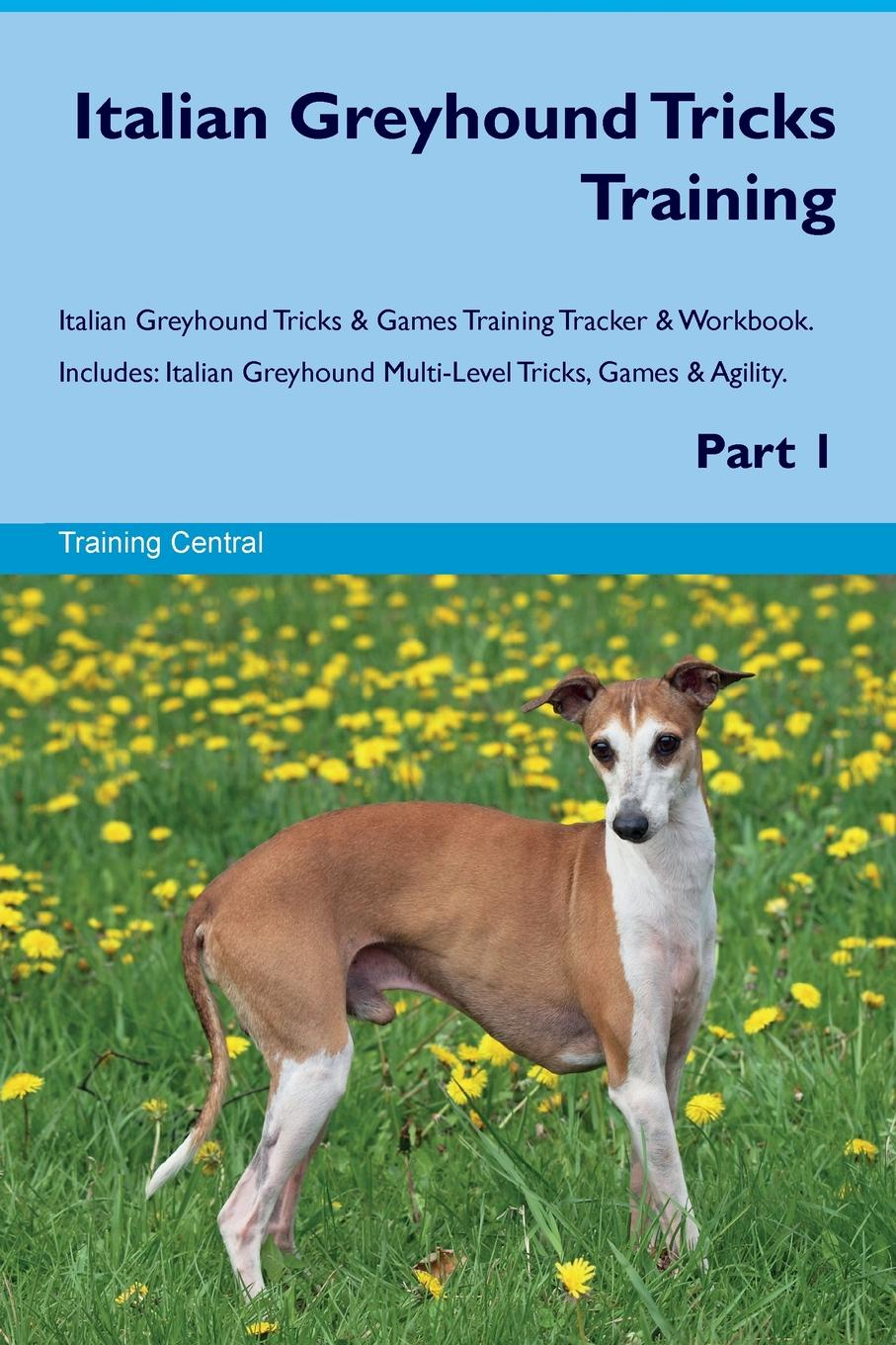 Training Central Italian Greyhound Tricks Training Italian Greyhound Tricks & Games Training Tracker & Workbook. Includes. Italian Greyhound Multi-Level Tricks, Games & Agility. Part 1
