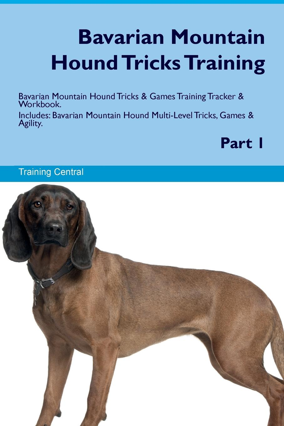 Training Central Bavarian Mountain Hound Tricks Training Bavarian Mountain Hound Tricks & Games Training Tracker & Workbook. Includes. Bavarian Mountain Hound Multi-Level Tricks, Games & Agility. Part 1 training central mountain feist tricks training mountain feist tricks