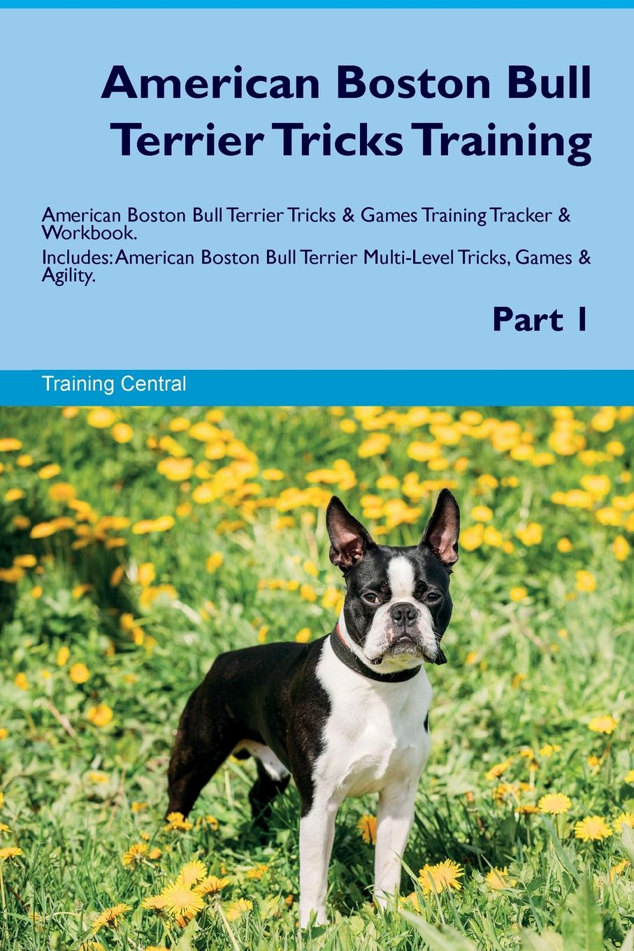 Training Central American Boston Bull Terrier Tricks Training American Boston Bull Terrier Tricks & Games Training Tracker & Workbook. Includes. American Boston Bull Terrier Multi-Level Tricks, Games & Agility. Part 1