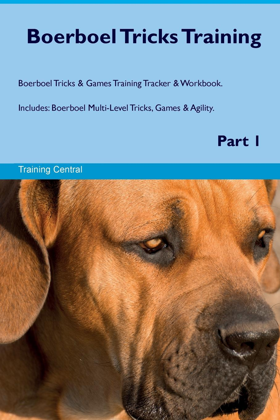 Фото - Training Central Boerboel Tricks Training Boerboel Tricks & Games Training Tracker & Workbook. Includes. Boerboel Multi-Level Tricks, Games & Agility. Part 1 harry holstone boerboel the boerboel dog owner s manual boerboel dog care personality grooming health costs and feeding all included