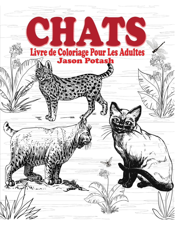 Jason Potash Chats Livre de Coloriage Pour Les Adultes charles blanc les beaux arts a l exposition universelle de 1878 french edition