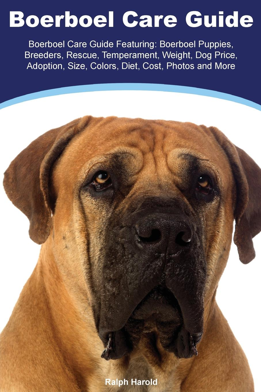 Фото - Ralph Harold Boerboel Boerboel Care Guide Featuring. Boerboel Puppies, Breeders, Rescue, Temperament, Weight, Dog Price, Adoption, Size, Colors, Diet, Cost, Photos and More harry holstone boerboel the boerboel dog owner s manual boerboel dog care personality grooming health costs and feeding all included