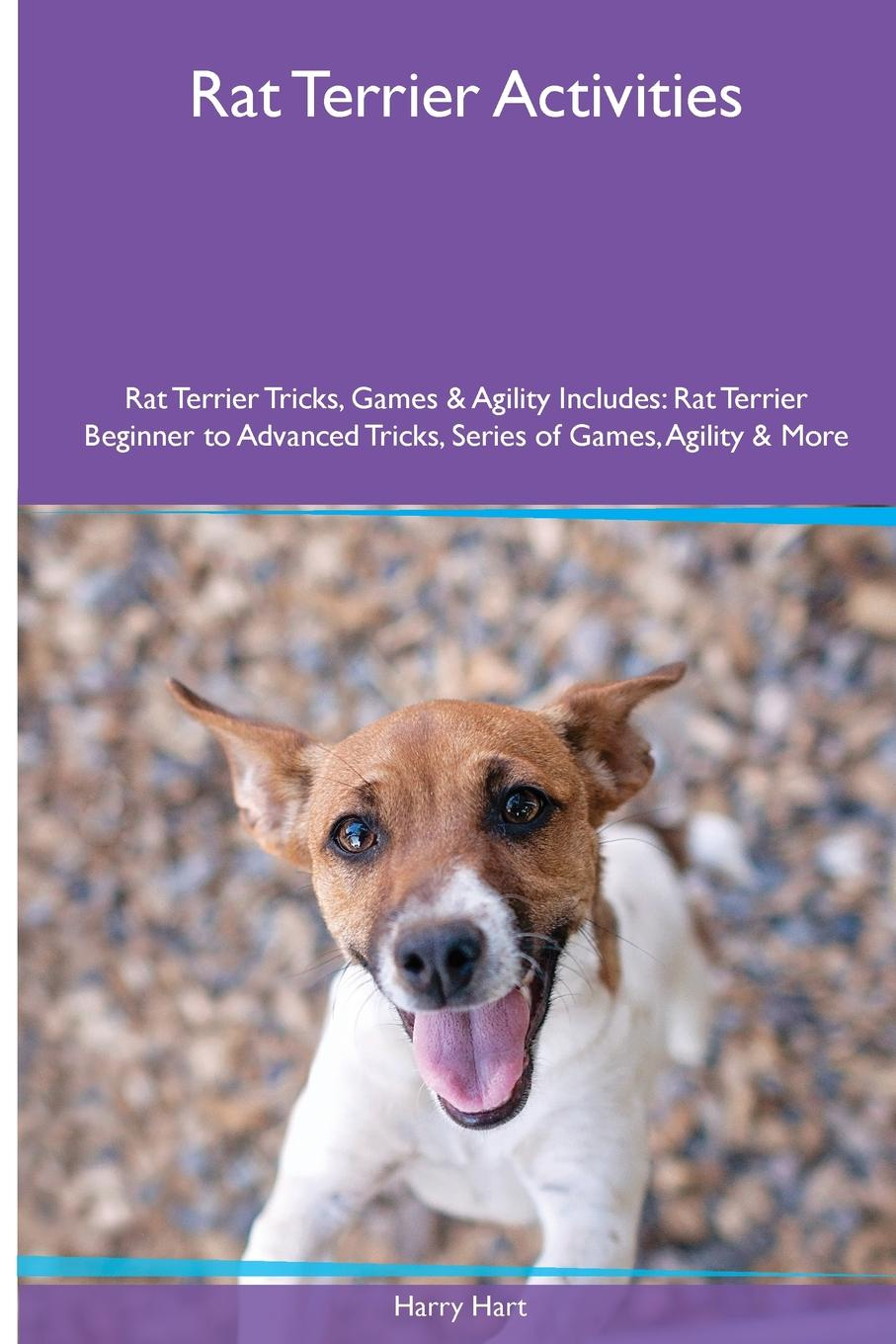 Rat Terrier  Activities Rat Terrier Tricks, Games & Agility. Includes. Rat Terrier Beginner to Advanced Tricks, Series of Games, Agility and More