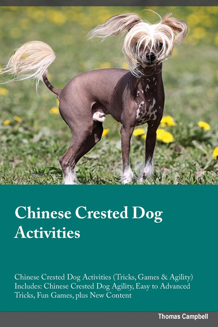 Jonathan Harris Chinese Crested Dog Activities Chinese Crested Dog Activities (Tricks, Games & Agility) Includes. Chinese Crested Dog Agility, Easy to Advanced Tricks, Fun Games, plus New Content скальп петуха veniard chinese cock cape