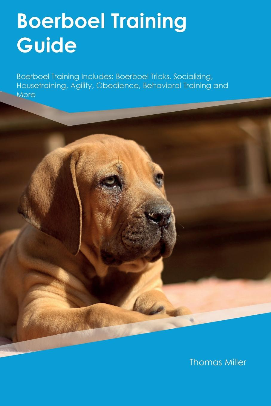 Фото - Adam Arnold Boerboel Training Guide Boerboel Training Includes. Boerboel Tricks, Socializing, Housetraining, Agility, Obedience, Behavioral Training and More harry holstone boerboel the boerboel dog owner s manual boerboel dog care personality grooming health costs and feeding all included