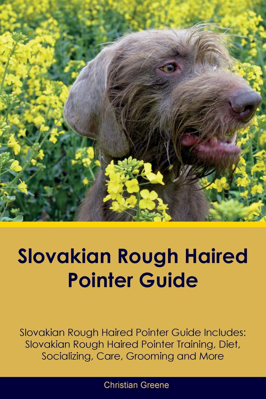 Christian Greene Slovakian Rough Haired Pointer Guide Slovakian Rough Haired Pointer Guide Includes. Slovakian Rough Haired Pointer Training, Diet, Socializing, Care, Grooming, Breeding and More the rough guide to tanzania