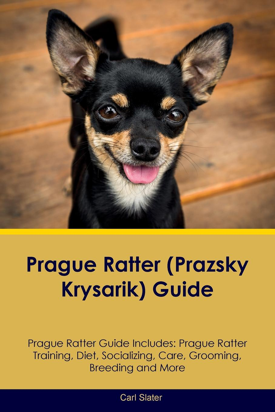 Carl Slater Prague Ratter (Prazsky Krysarik) Guide Prague Ratter Guide Includes. Prague Ratter Training, Diet, Socializing, Care, Grooming, Breeding and More prague pocket map