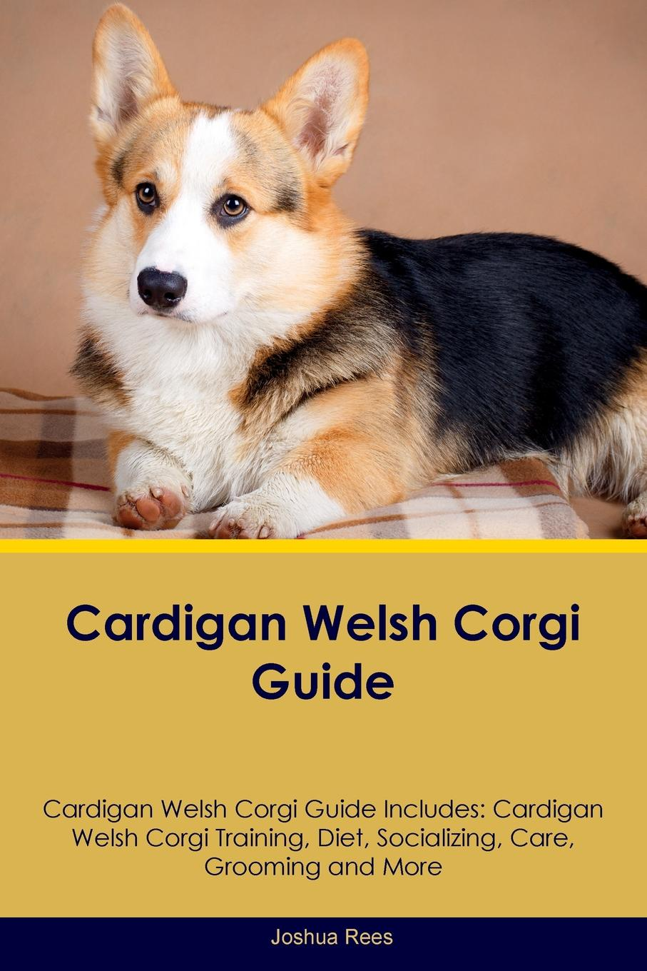 Joshua Rees Cardigan Welsh Corgi Guide Cardigan Welsh Corgi Guide Includes. Cardigan Welsh Corgi Training, Diet, Socializing, Care, Grooming, Breeding and More t jones a guide to welsh part i