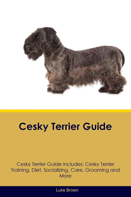 Luke Brown Cesky Terrier Guide Cesky Terrier Guide Includes. Cesky Terrier Training, Diet, Socializing, Care, Grooming, Breeding and More training central cesky terrier tricks training cesky terrier tricks