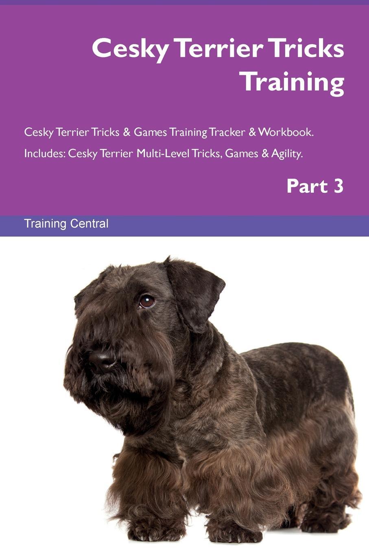 Training Central Cesky Terrier Tricks Training Cesky Terrier Tricks & Games Training Tracker & Workbook. Includes. Cesky Terrier Multi-Level Tricks, Games & Agility. Part 3 training central cesky terrier tricks training cesky terrier tricks