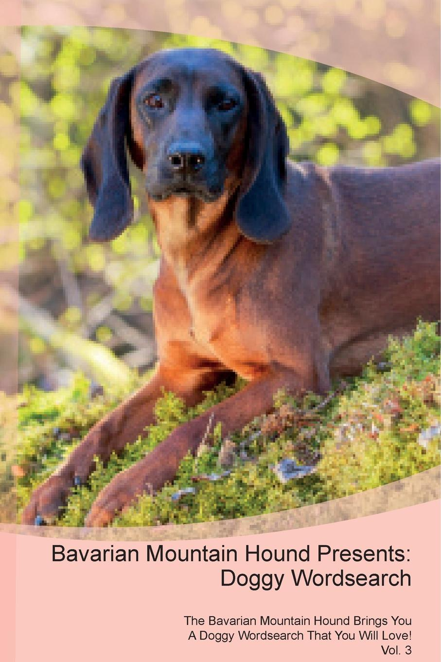Doggy Puzzles Bavarian Mountain Hound Presents. Wordsearch The Brings You A That Will Love! Vol. 3