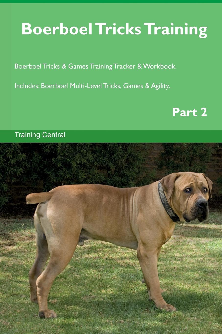 Фото - Training Central Boerboel Tricks Training Boerboel Tricks & Games Training Tracker & Workbook. Includes. Boerboel Multi-Level Tricks, Games & Agility. Part 2 harry holstone boerboel the boerboel dog owner s manual boerboel dog care personality grooming health costs and feeding all included