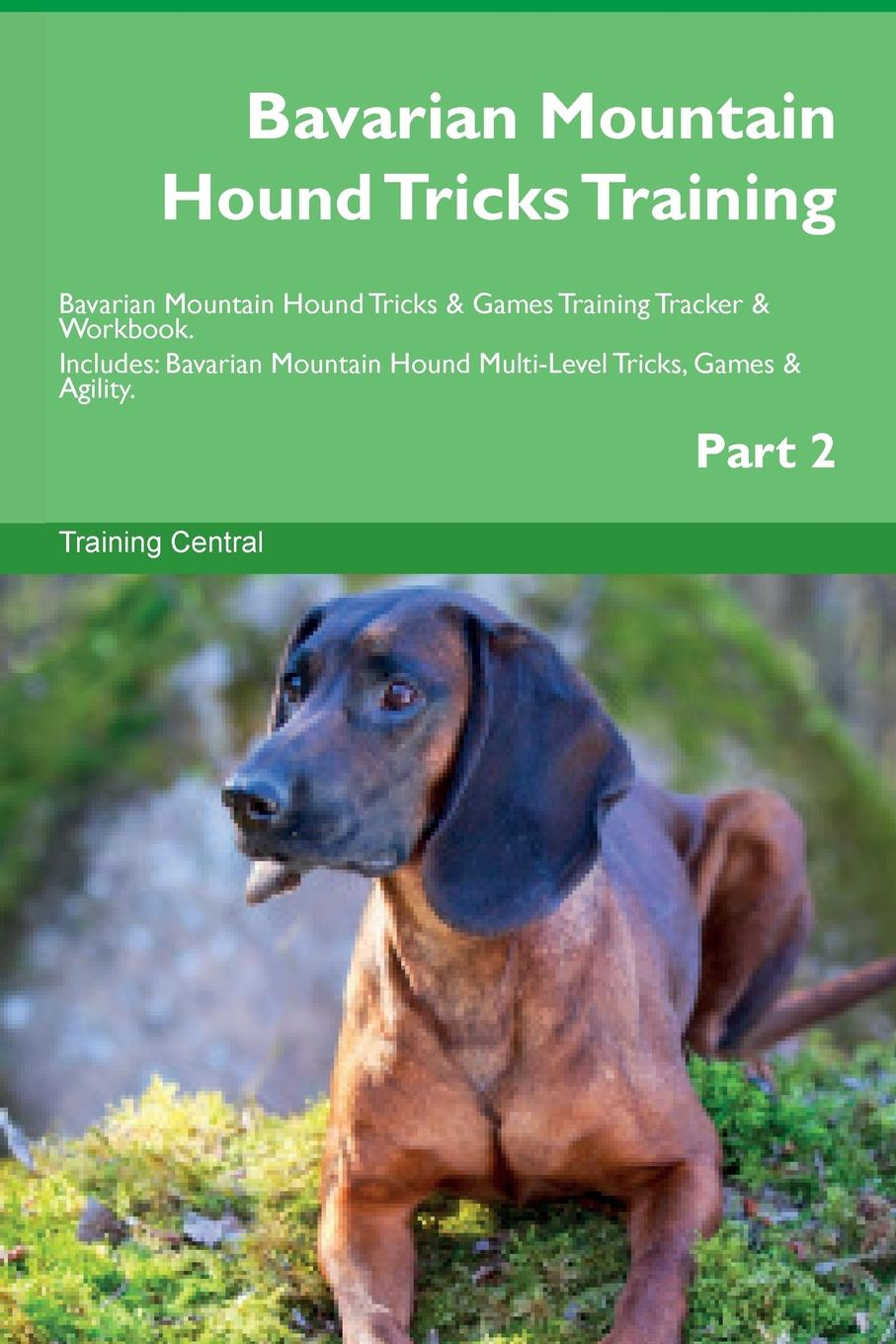 Training Central Bavarian Mountain Hound Tricks Training Bavarian Mountain Hound Tricks & Games Training Tracker & Workbook. Includes. Bavarian Mountain Hound Multi-Level Tricks, Games & Agility. Part 2 training central mountain feist tricks training mountain feist tricks