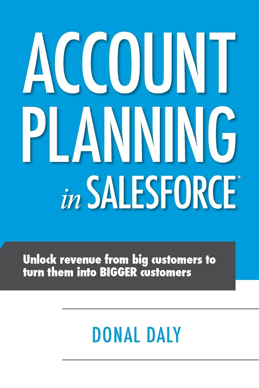Donal Daly Account Planning in Salesforce thomas egner customer oriented and efficient account planning