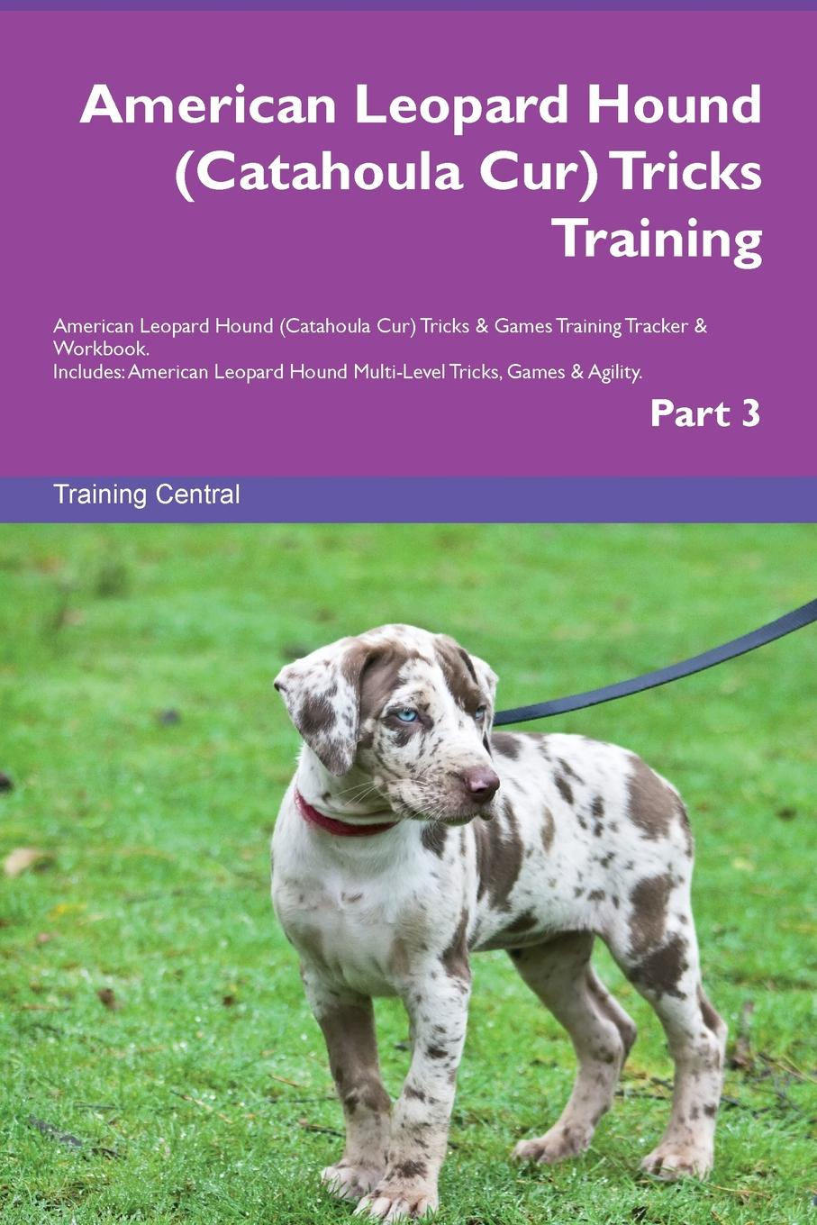 Training Central American Leopard Hound (Catahoula Cur) Tricks Training American Leopard Hound (Catahoula Cur) Tricks & Games Training Tracker & Workbook. Includes. American Leopard Hound Multi-Level Tricks, Games & Agility. Part 3 training central russian piebald hound tricks training russian piebald hound tricks games training tracker workbook includes russian piebald hound multi level tricks games agility part 3