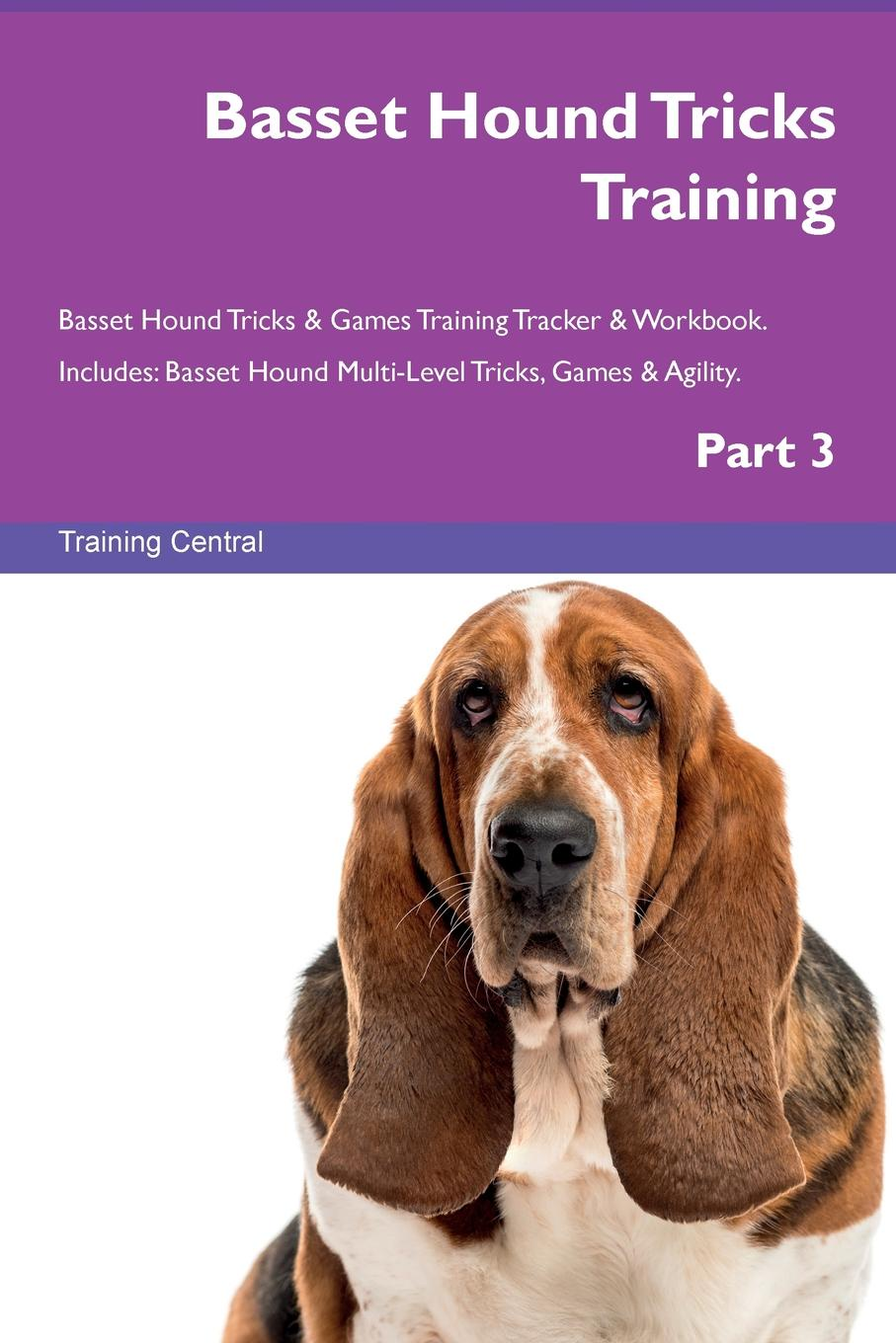 Training Central Basset Hound Tricks Training Basset Hound Tricks & Games Training Tracker & Workbook. Includes. Basset Hound Multi-Level Tricks, Games & Agility. Part 3 training central russian piebald hound tricks training russian piebald hound tricks games training tracker workbook includes russian piebald hound multi level tricks games agility part 3